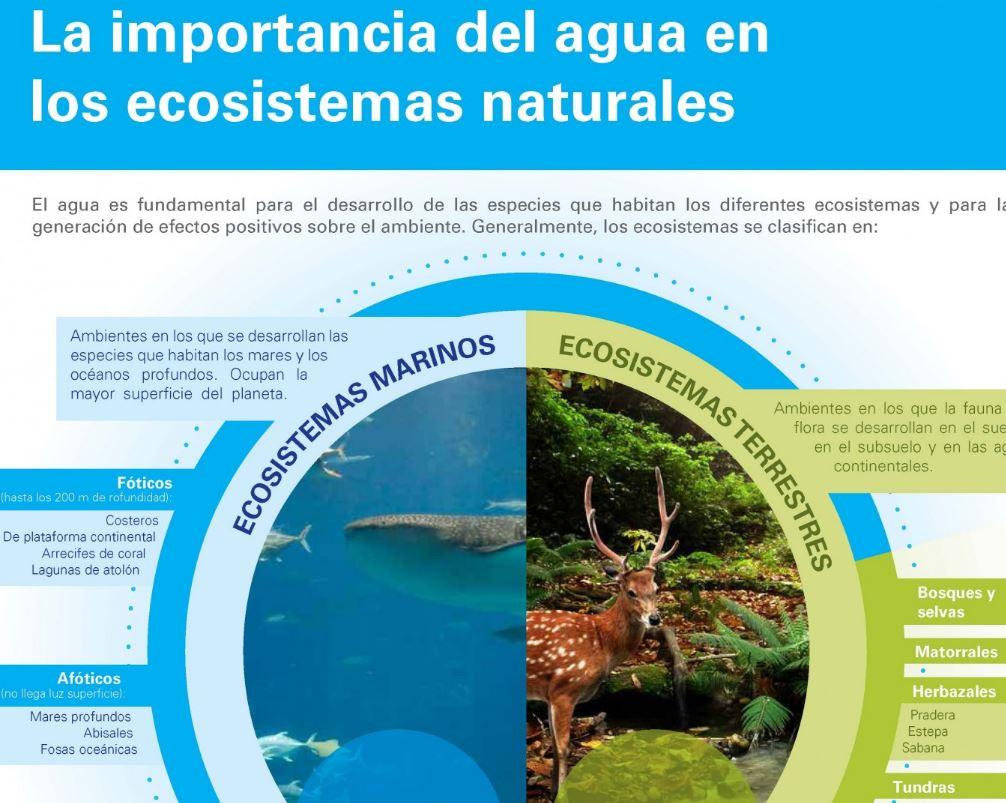 agua ecosistemas
