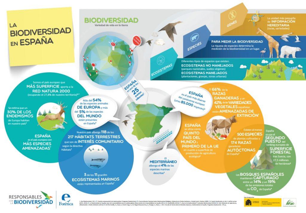 infografia biodiversidad en españa