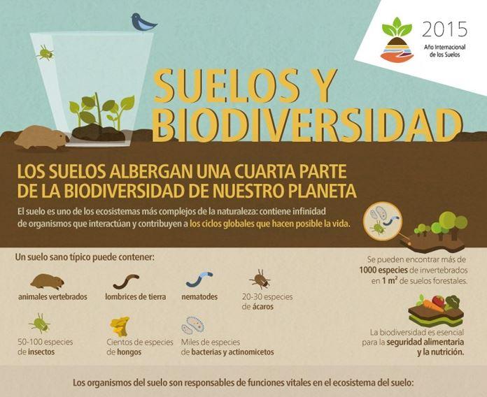 biodiversidad y tierra