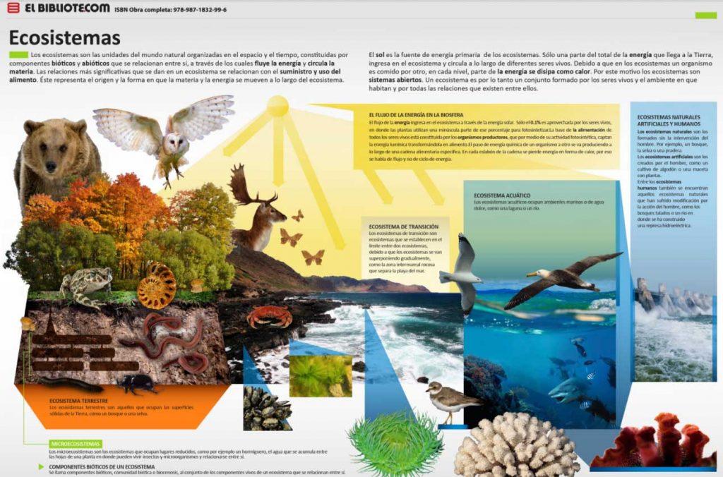 clasificacion ecosistemas terrestre