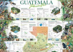 ecosistema de guatemala