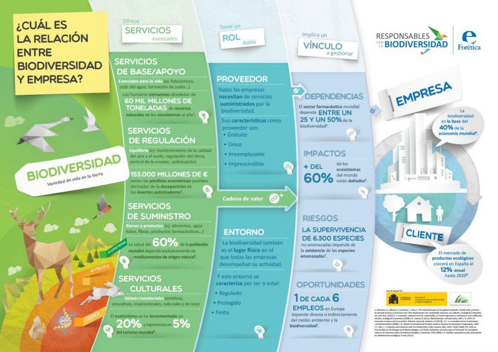 infografia biodiversidad empresa