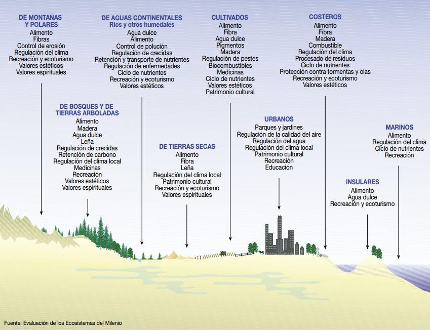 actividades humanas sobre ecosistemas