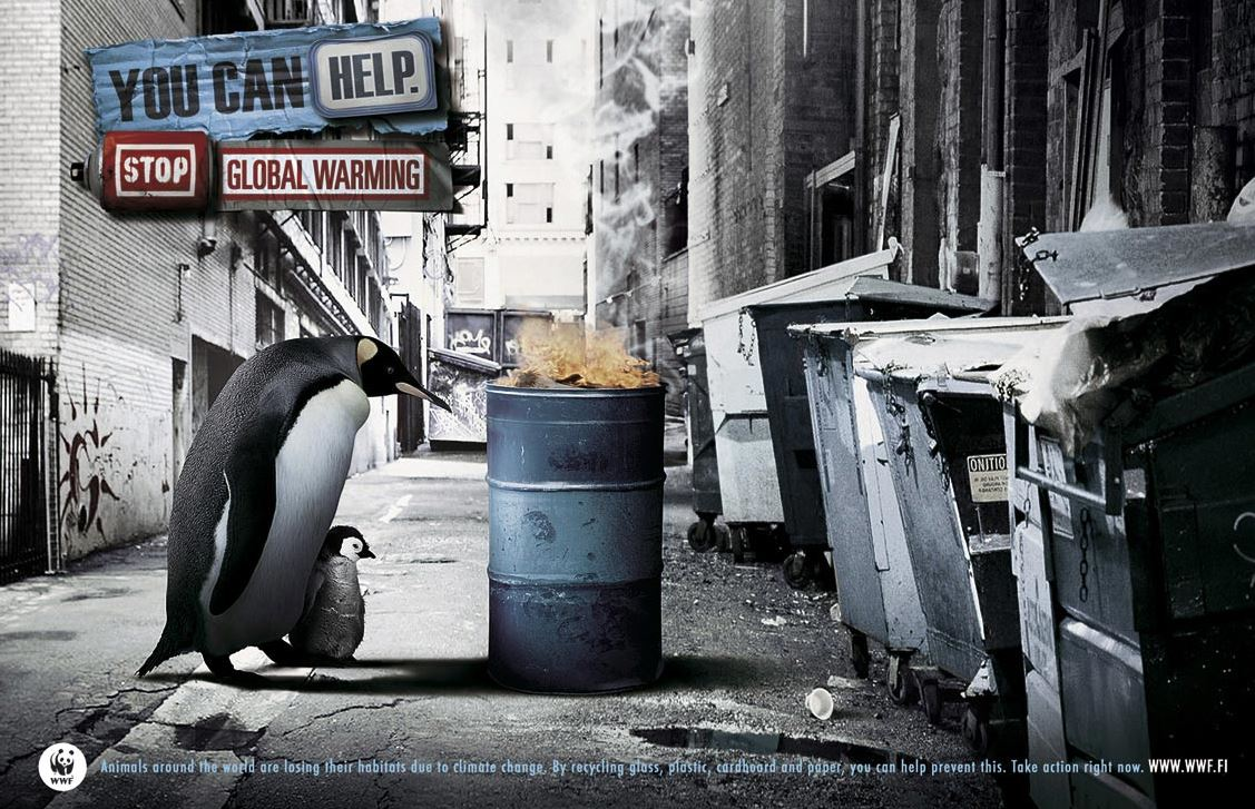cambio climatico pinguinos