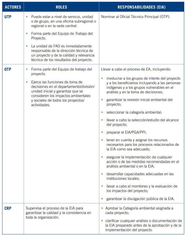 actores y responsabilidades proyecto evaluación impacto ambiental