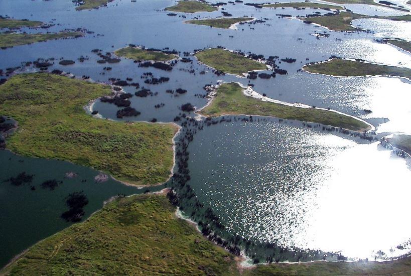 ecosistemas de humedales y pantanos