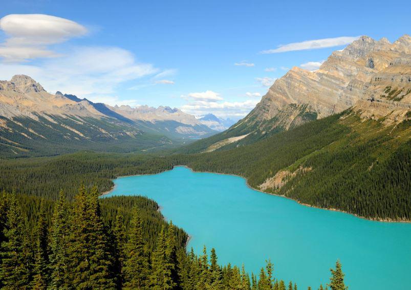 ecosistema de lagos y lagunas