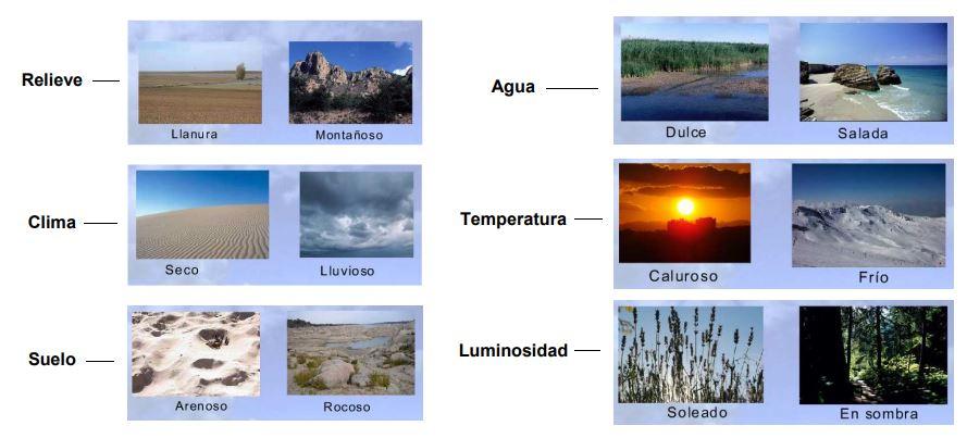 componentes del biotopo