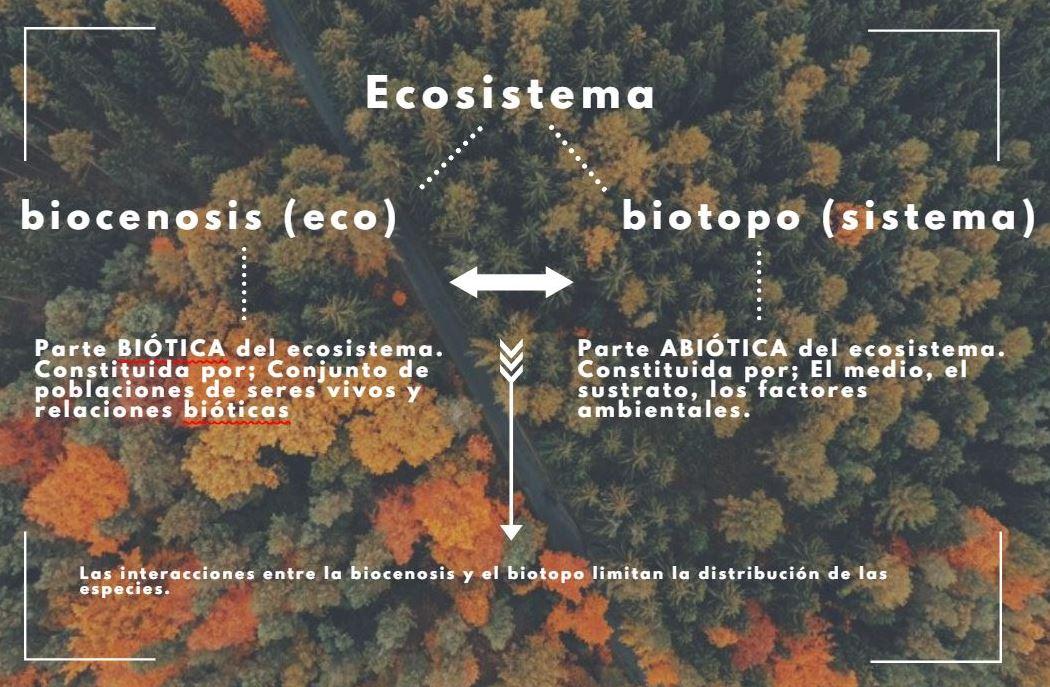 concepto de biotopo