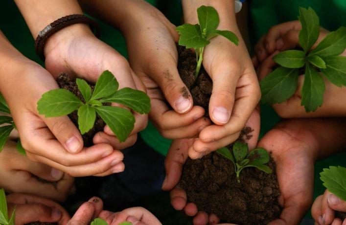educación ecológica de la biodiversidad