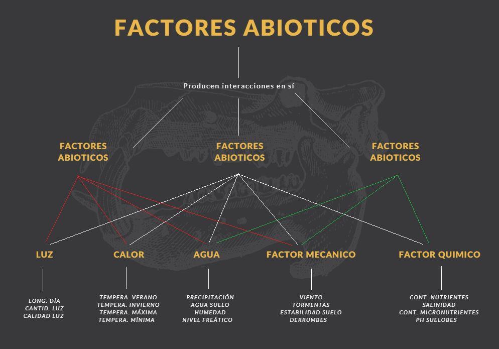 factores abióticos ejemplos