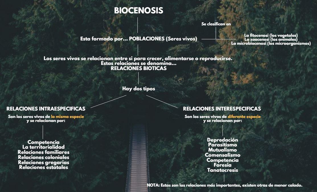 tipos biocenosis