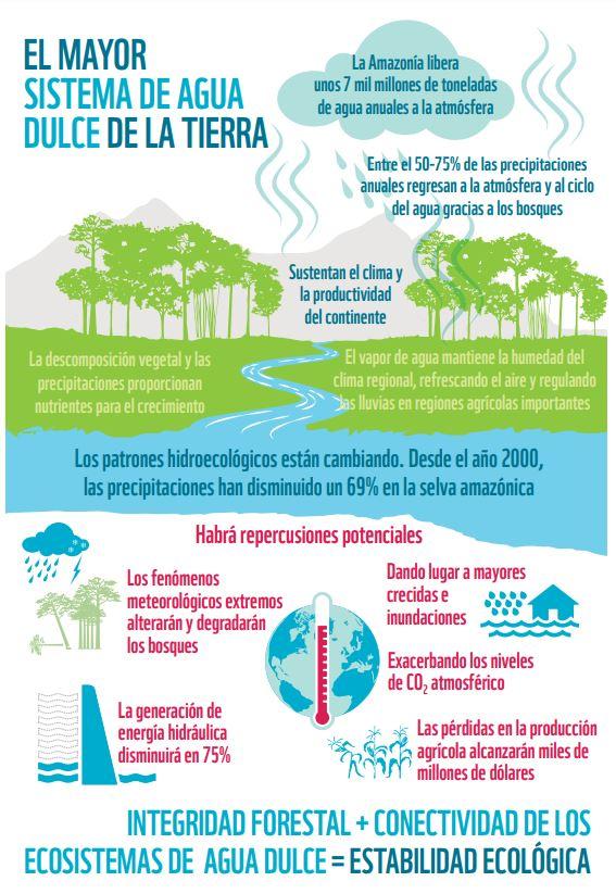 agua del amazonas