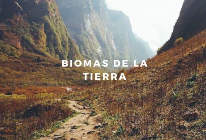biomas tierra