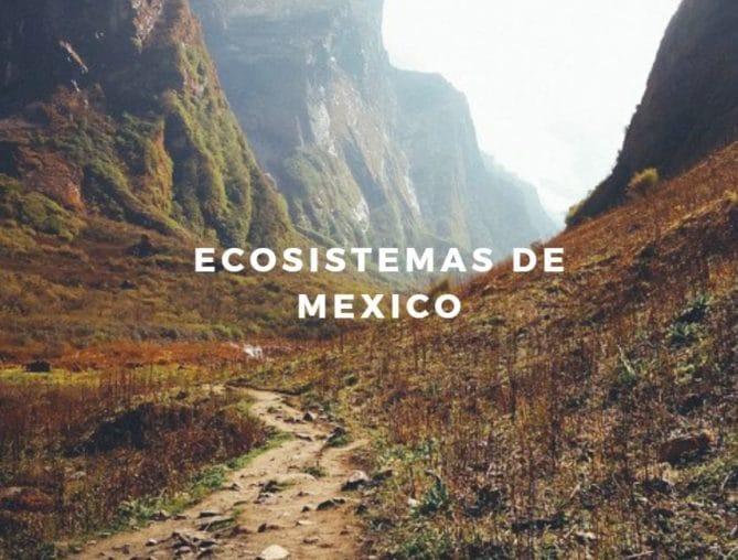 ecosistemas región mexicana