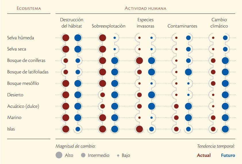 impacto actividad humana naturaleza mexico