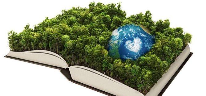 curso de medio ambiente