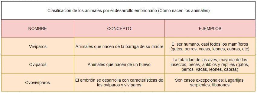 cómo nacen los animales