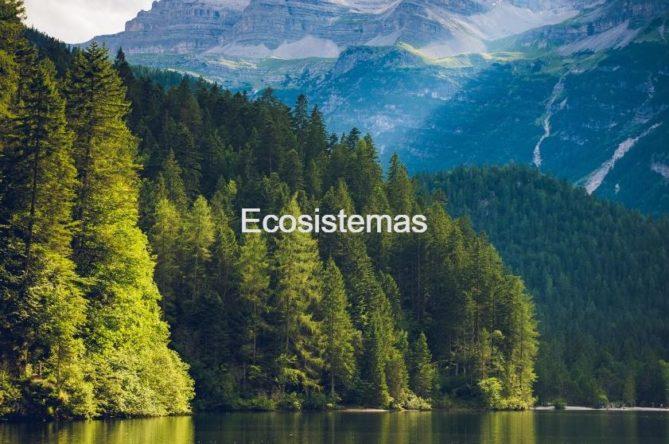 ecosistemas y la biosfera